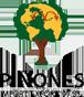 PIÑONES IMPORT-EXPORT´97 S.L.